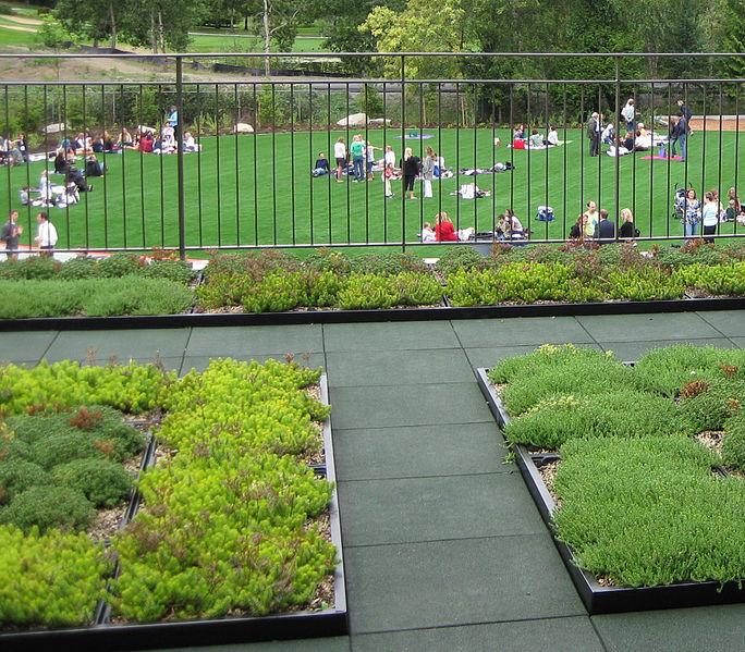 Green Roofs Revolution